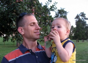 Eating a fresh-picked apple