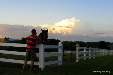 thunderhead over pasture