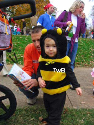 Calvin the Bee TwB