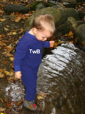 Rapidan River TwB