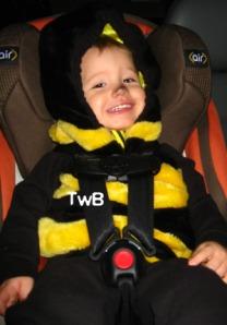 Car seat Bee